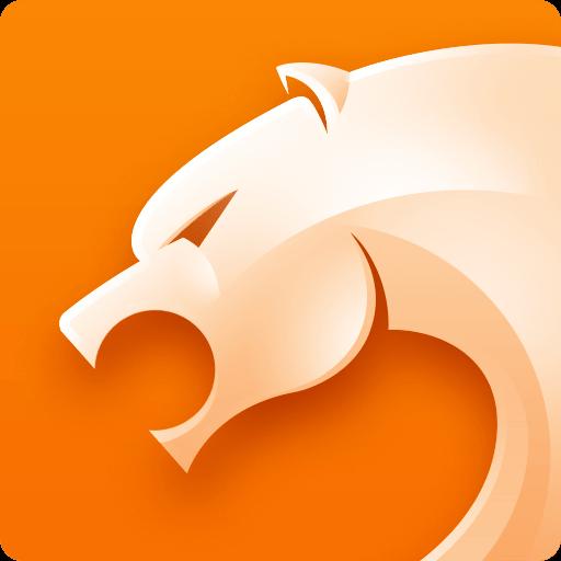 猎豹浏览器(首款双核安全浏览器)