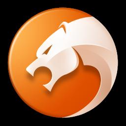 猎豹安全浏览器(极速安全浏览器)