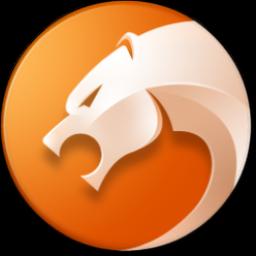 猎豹安全浏览器 中文版