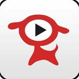皮皮播放器(高清视频免费观看)