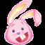 酷兔高中英语学习软件免费版(英语学习软件)