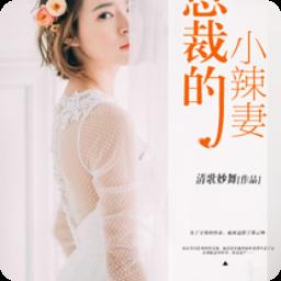 总裁的小辣妻最新章节阅读