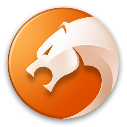 獵豹瀏覽器(智能雙核瀏覽器)