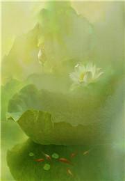 异士神术(宁远,洛樱)小说免费在线阅读