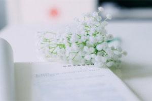 总裁夫人把结婚证撕了印100本送去让她撕个够小说全本章节在线阅读