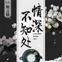 主角是沈素言慕寒川的小说