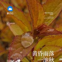 靜子克郎浩介小說免費在線閱讀