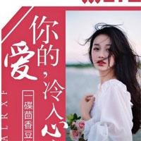 李北斗程星河小说(桃花渡)