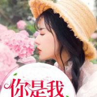 情深難再得(夏晴空、陸淮安)小說全文免費閱讀
